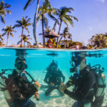 Diving Spots in the Philippines
